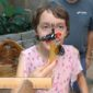 The Butterfly Palace and Rainforest Adventure in Branson