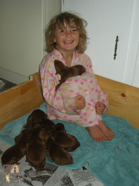 4 days old – 8 very content puppies :)