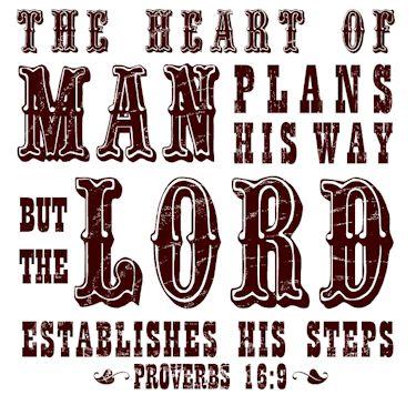 Proverbs16.9