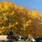 Fall is here in all its beauty